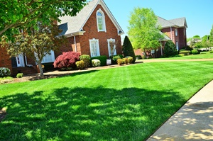 Residential Lawn Maintenance Services Milwaukee