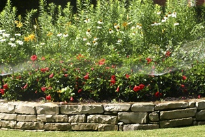 Residential and commercial landscaping services throughout southeast Wisconsin