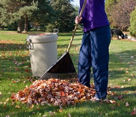 Fall Leaf Cleanup in Glendale